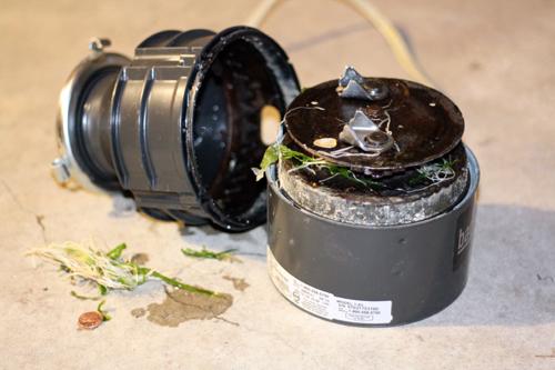 Experienced plumbers available today for garbage disposal repair in Santa Clarita, CA